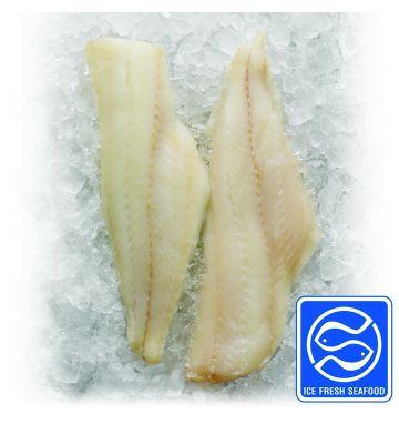 Haddock Skinless Pinbone-In (FI861I)